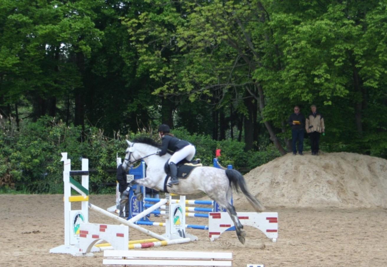 springen-09