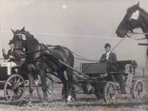 1948 Einspännerprfg