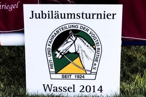 Wassel 2014